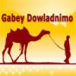 Gabey T1 Gabey Dowladnimo