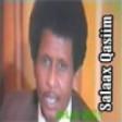 Track 09 Salaax Qasiim Hits