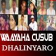 Dhalin Yaro Waa in.. Dhalinyaro